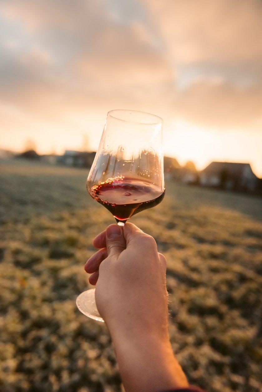Weinglas Landschaft Rotwein Natur